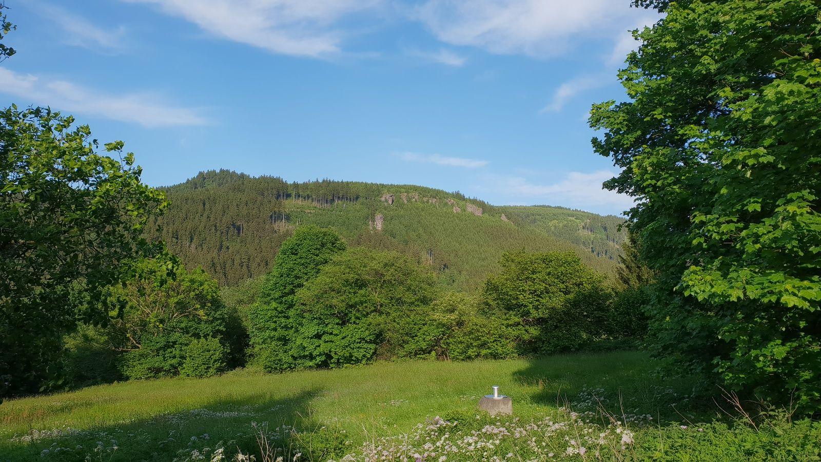 Blick vom Tal zur hohen M�st