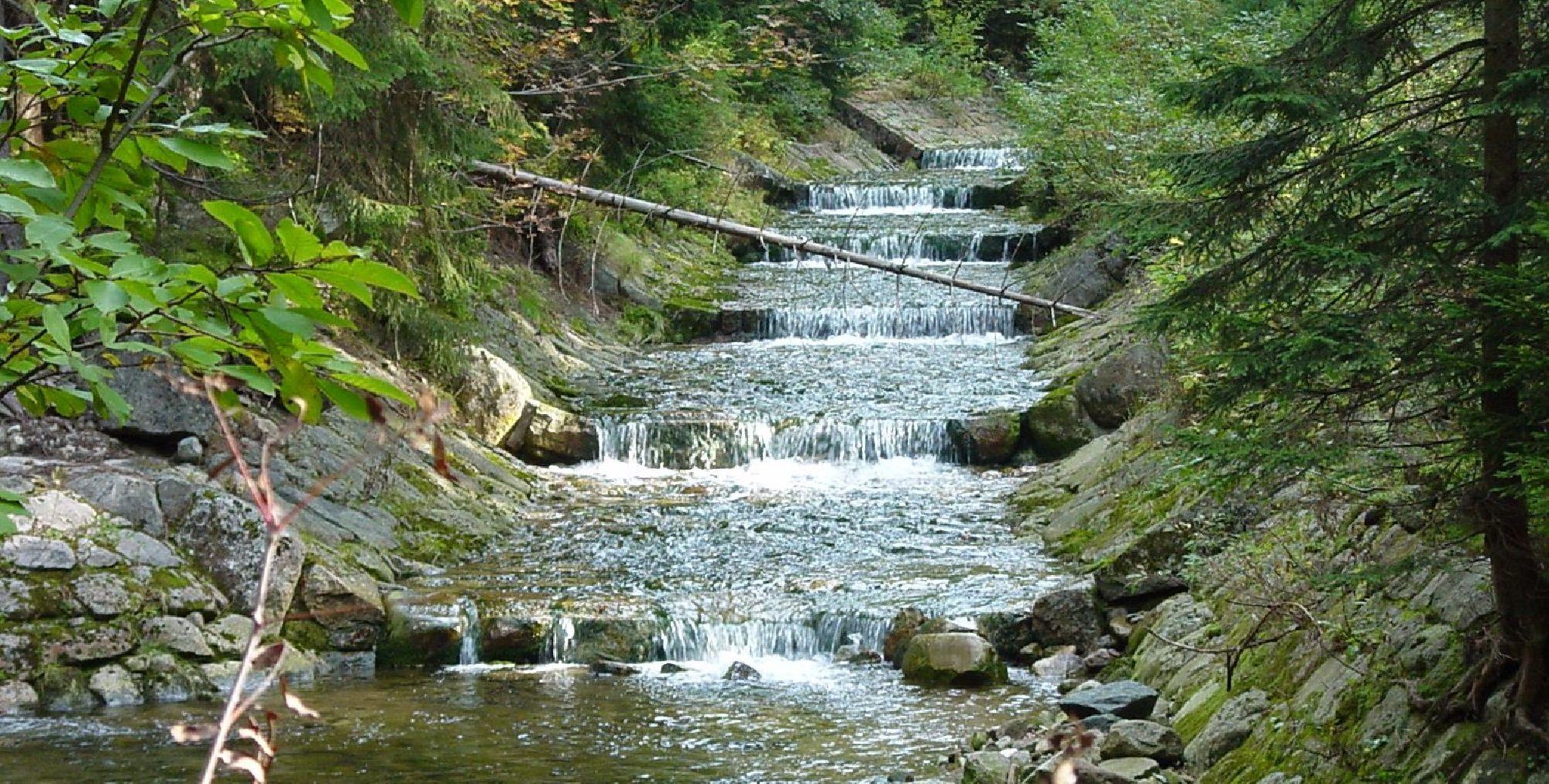 Bach im Riesengebirge