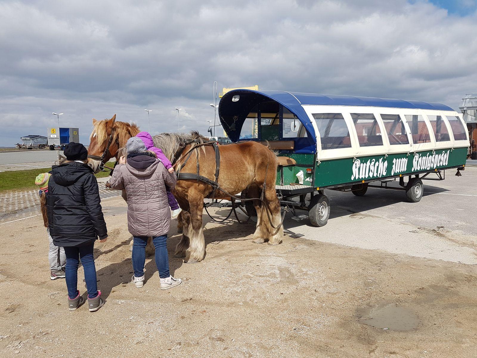 Pferdekutsche auf Hooge